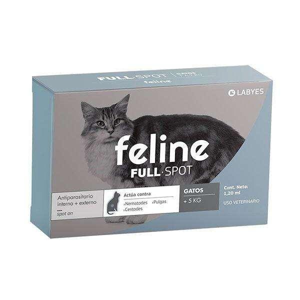 FELINE FULL SPOT más de 5