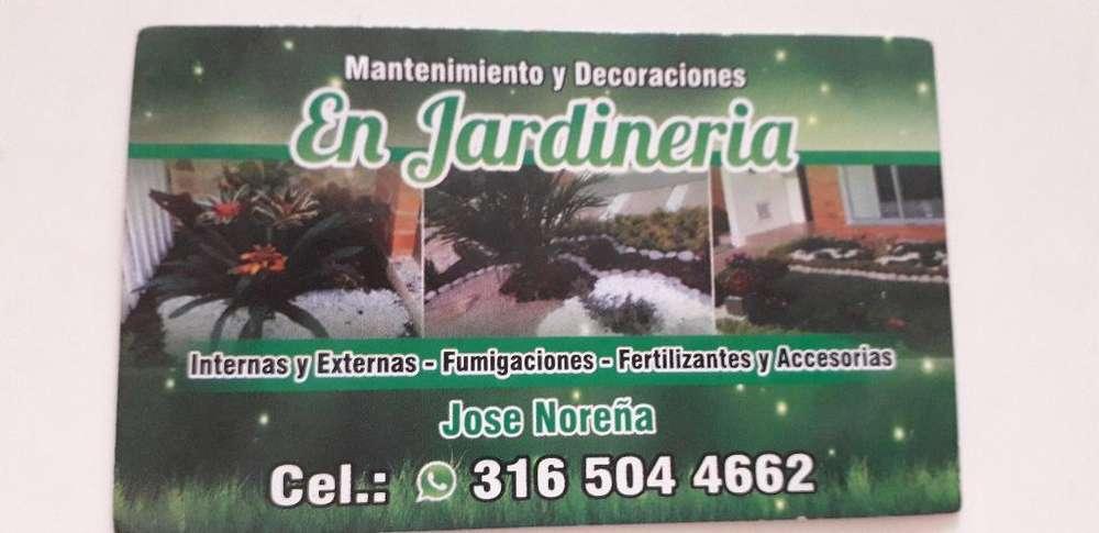 Mantenimiento Y Decoraciones en Jardiner