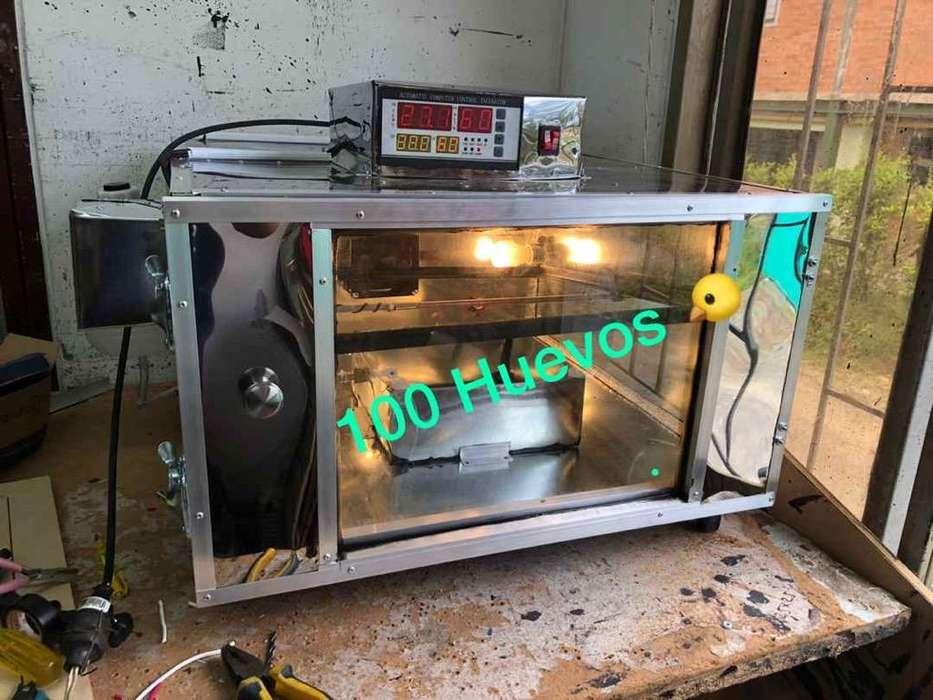 Incubadora de 100 Huevos Gallina Etc