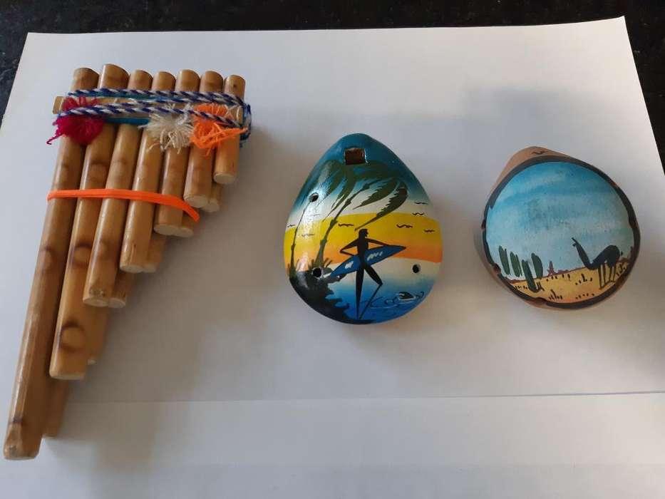 Instrumentos Musicales Del Norte Precio