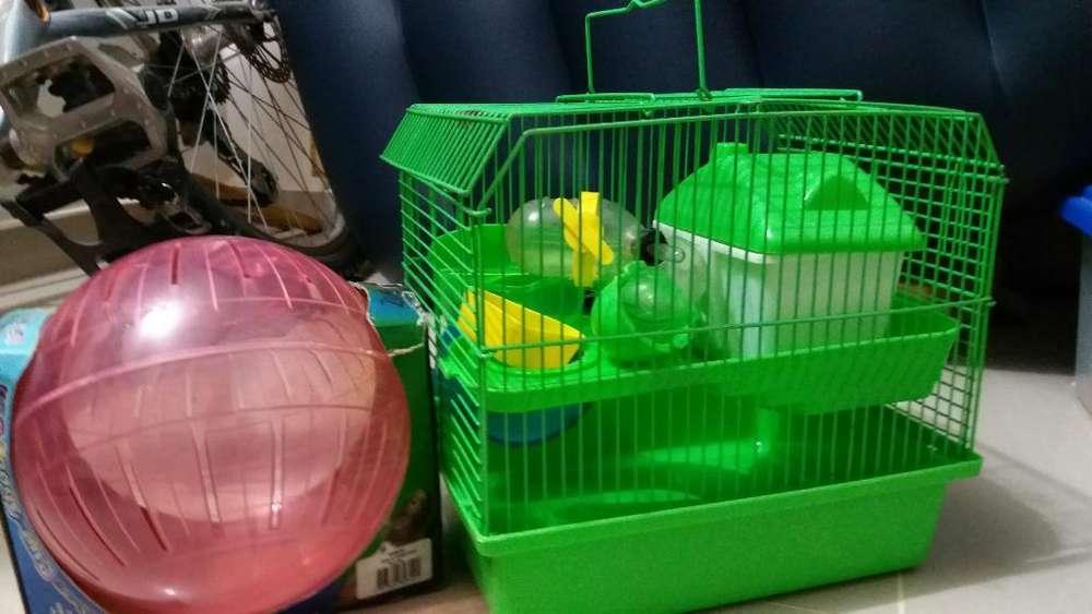 Casa Hamster Y Bola