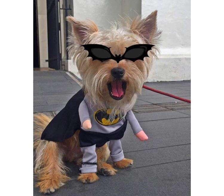 Vendo Disfraz de Batman Y Capitan Americ