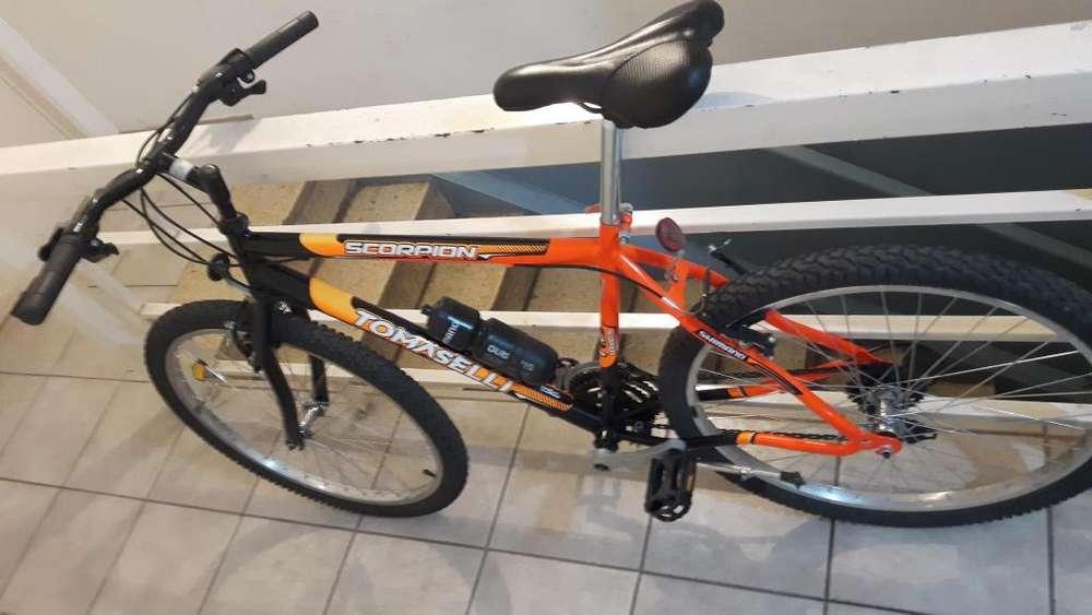 Bicicleta Tomasseli