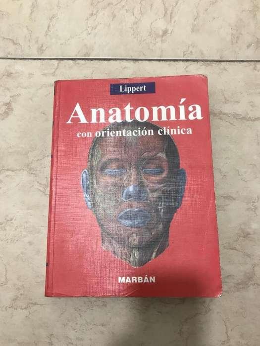 LIBRO DE ANATOMIA LIPPERT