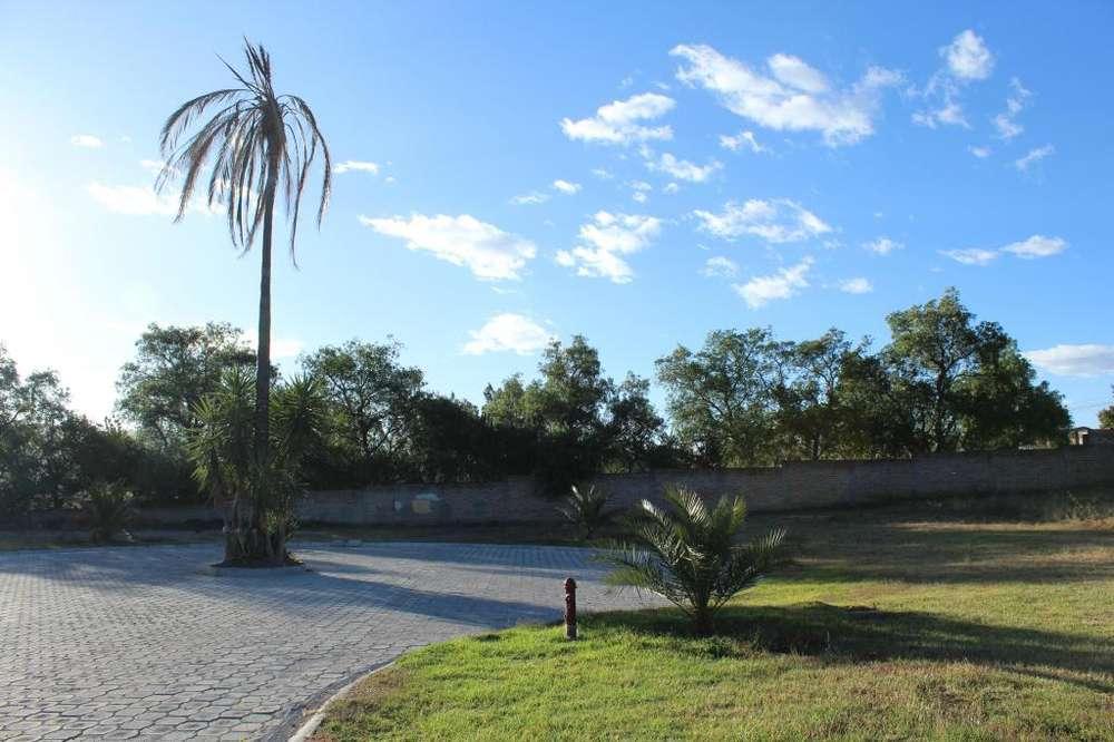 Hermoso terreno (1.000 m2) dentro de urbanización en Tumbaco (Collaquí)