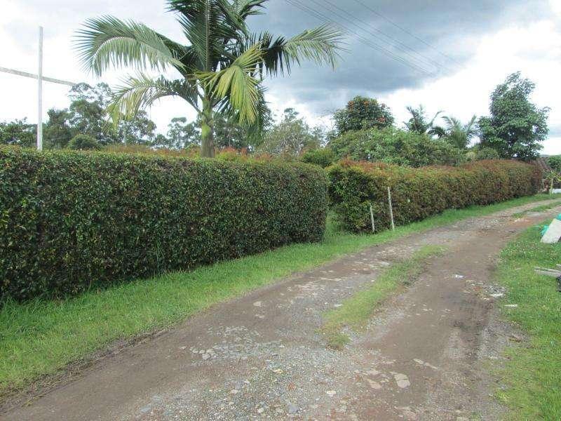 Cod. VBBER806 Lote En Venta En Rionegro Llanogrande