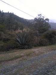 Venta de terreno ubicado en Tumbaco en urbanización cerrada / sector de Intervalles