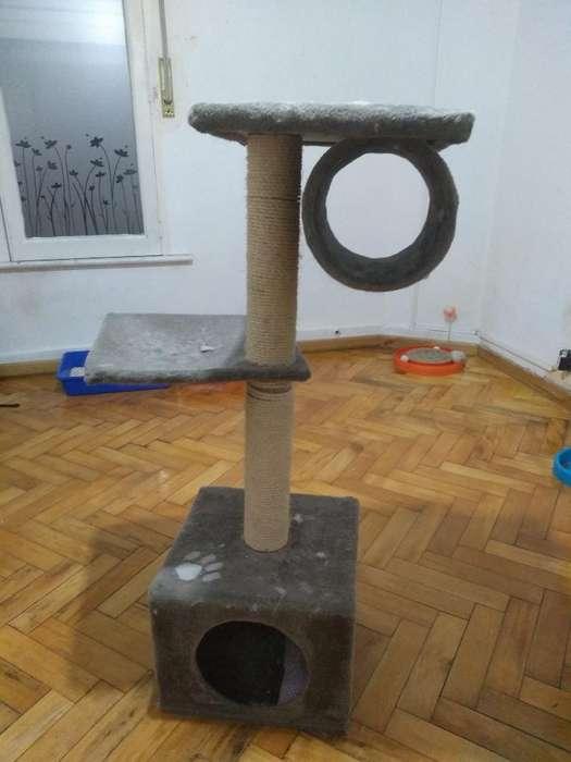 Torre para <strong>gato</strong>s