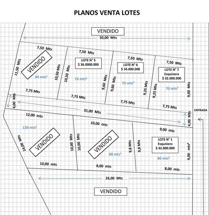 Vendo Lotes Villa Gorgona
