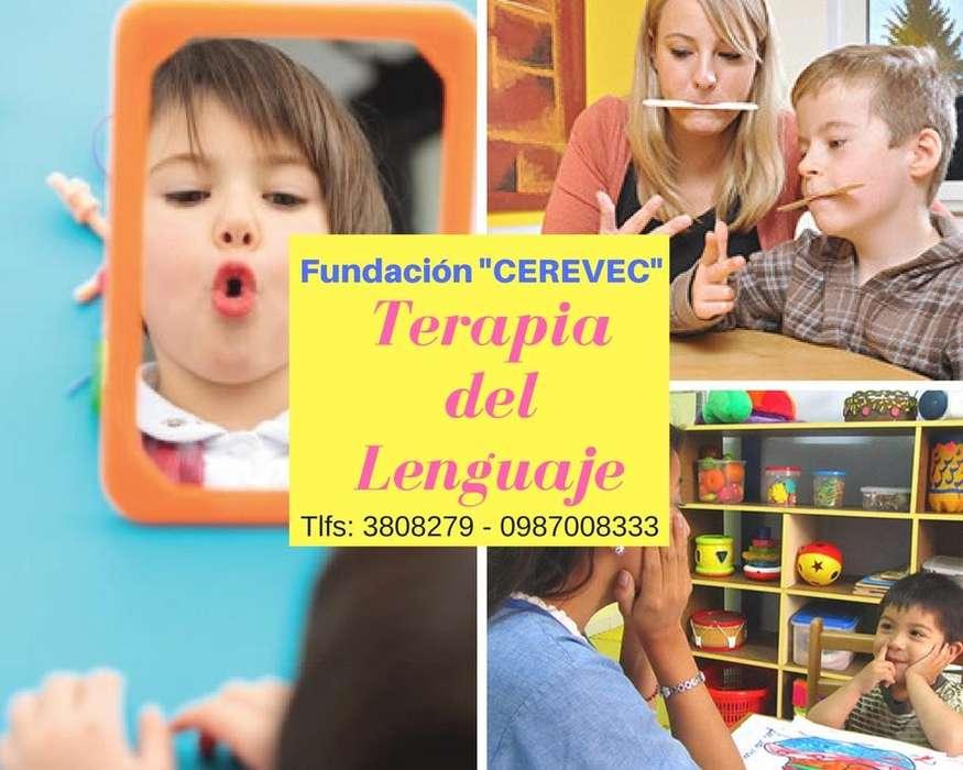 EVALUACIÓN Y TERAPIA DEL LENGUAJE - 0987008333