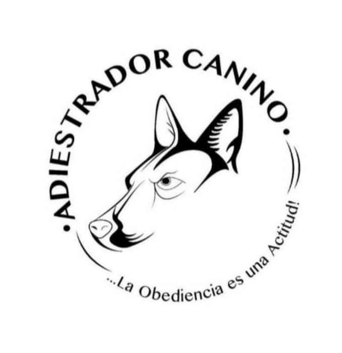 Entrenador,<strong>veterinario</strong> Y Etologo Canino.