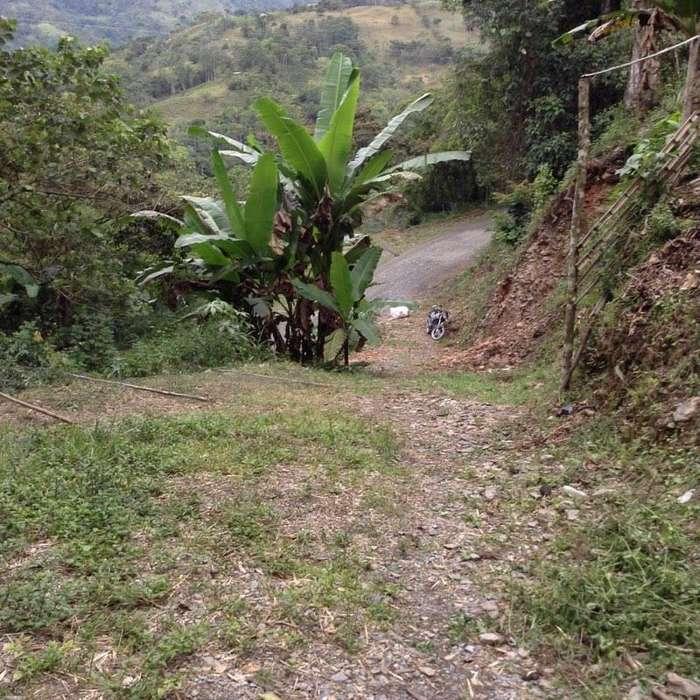 Vendo Finca 25 hectáreas en Paime cundinamarca a hora y media de Pacho