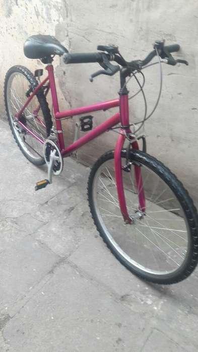 Bici Rod.26