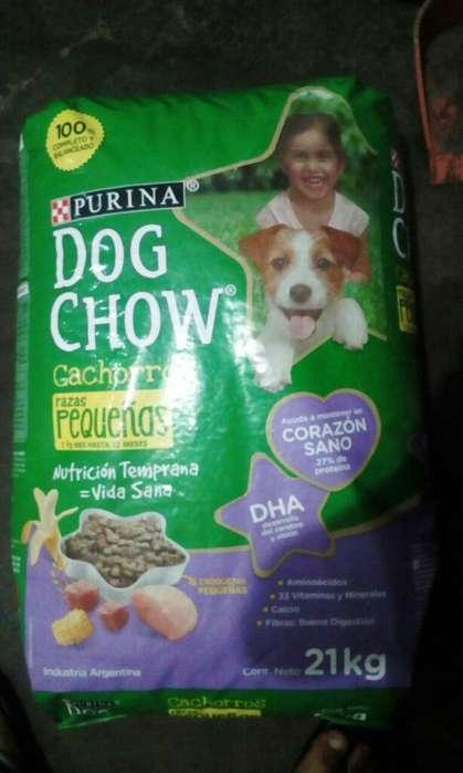 Dog Chow Razas Pequeñas 21 Kilos
