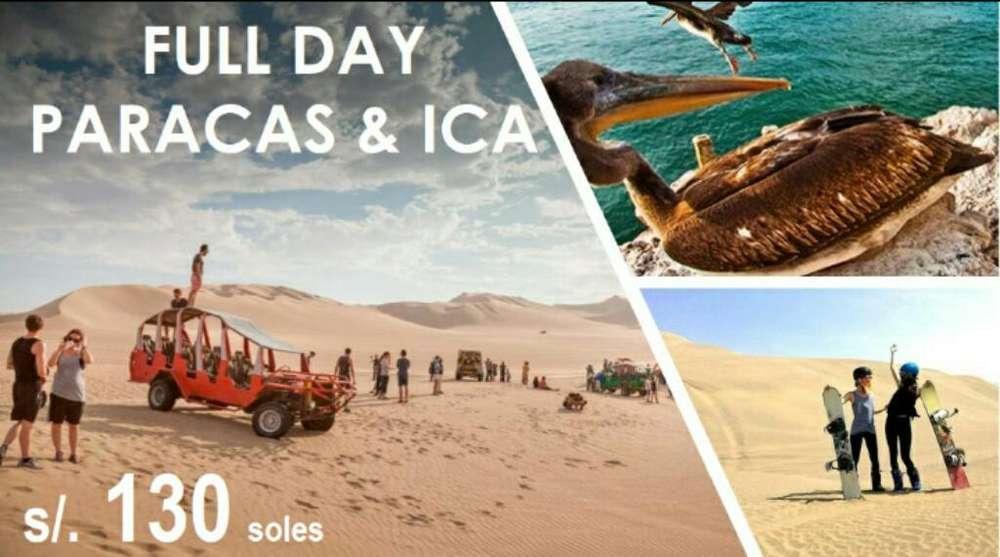 Paracas & Ica