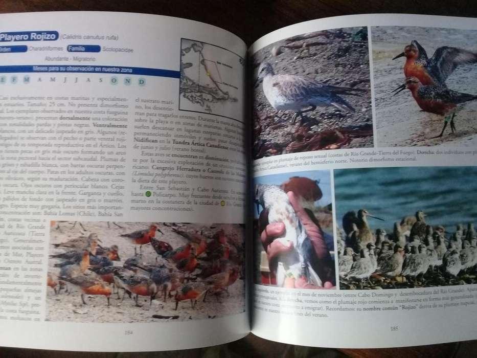 Libro de aves de Tierra del Fuego