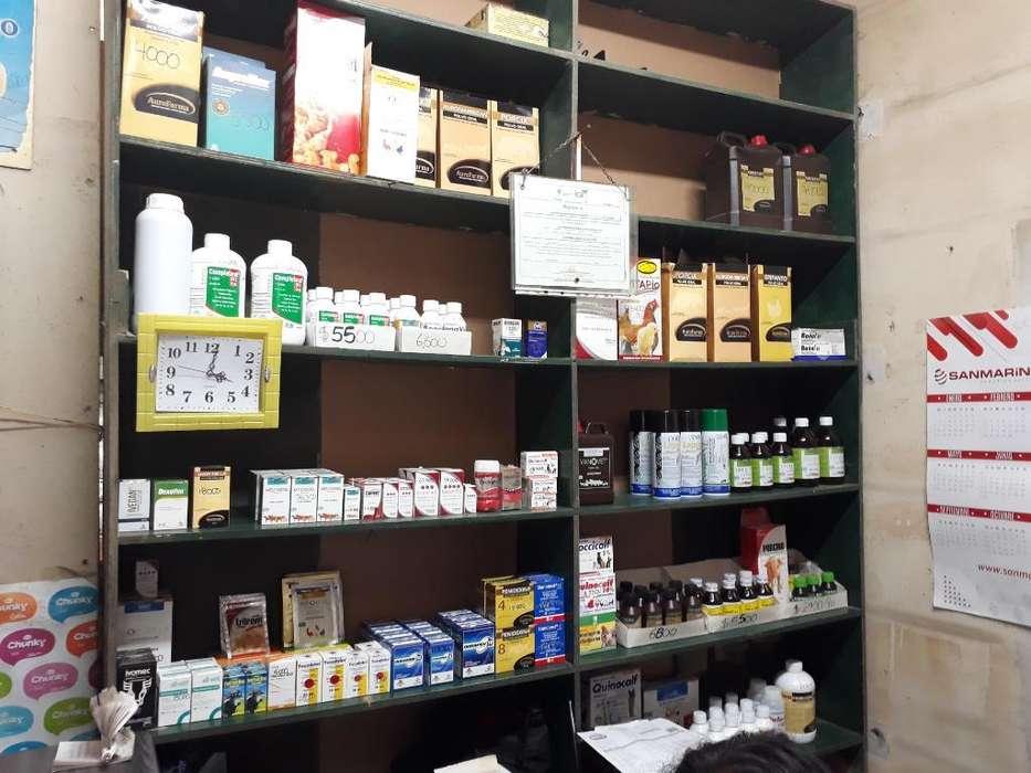 Todo Tipo de Medicamento Alimento para T