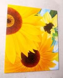Cuadros decorativos, tripticos, polipticos en acrilico y oleo florales girasoles