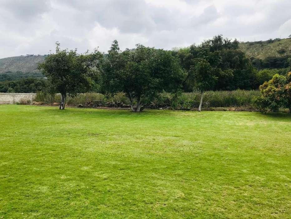 Terreno 5000 mtrs Guayllabamba, céntrico con casa 400 mtrs