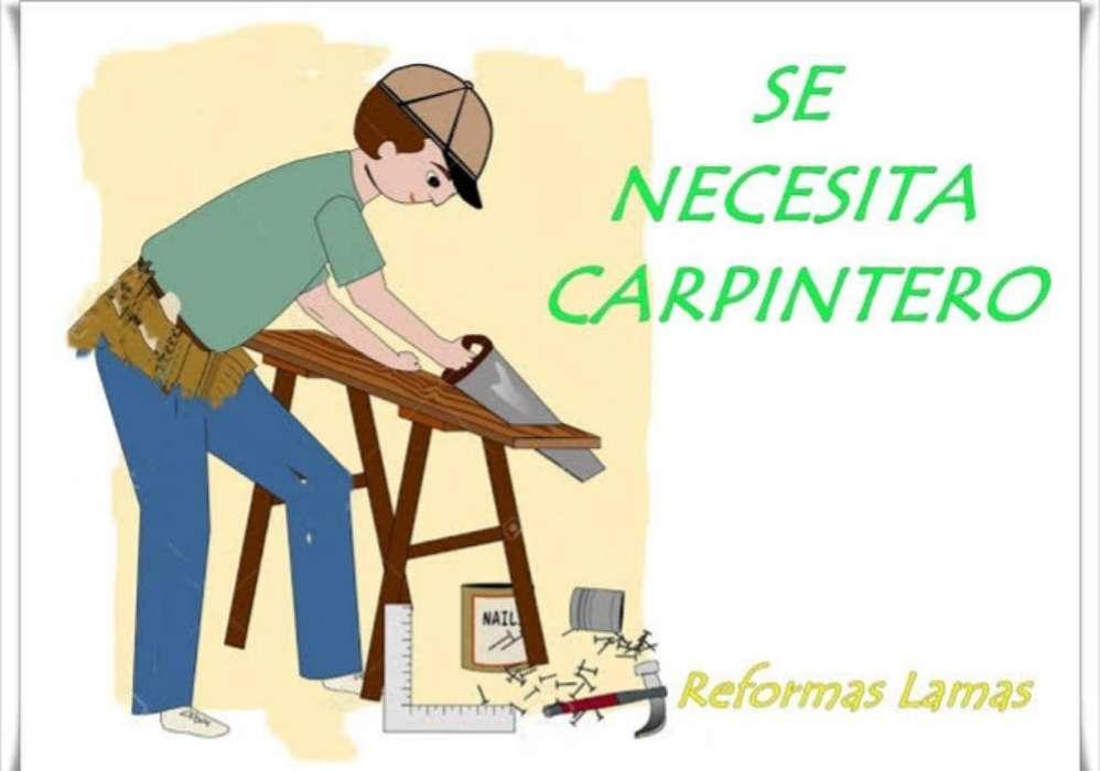 Se Busca Carpintero Ebanista