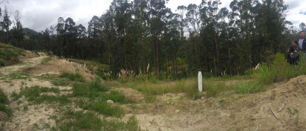 Terreno en Venta Sector Challuabamba Km 14.5. vía al Molle