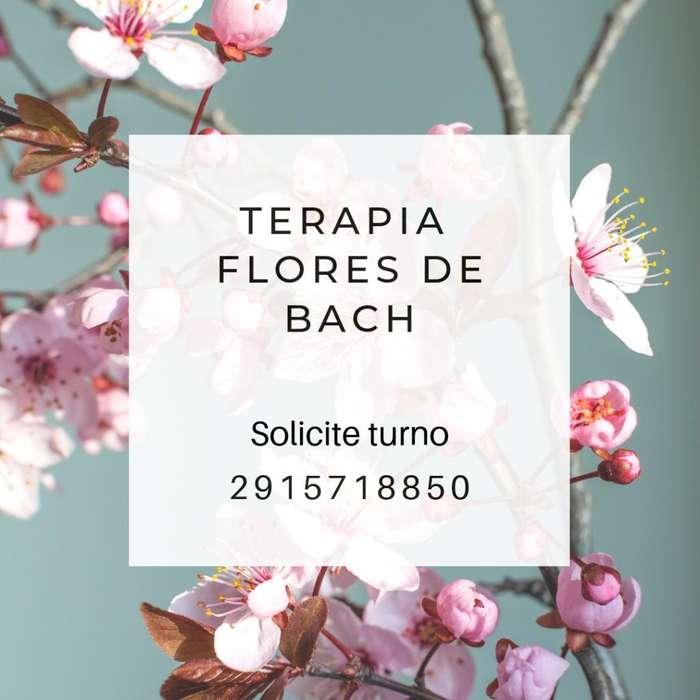 Terapia Flores de Bach