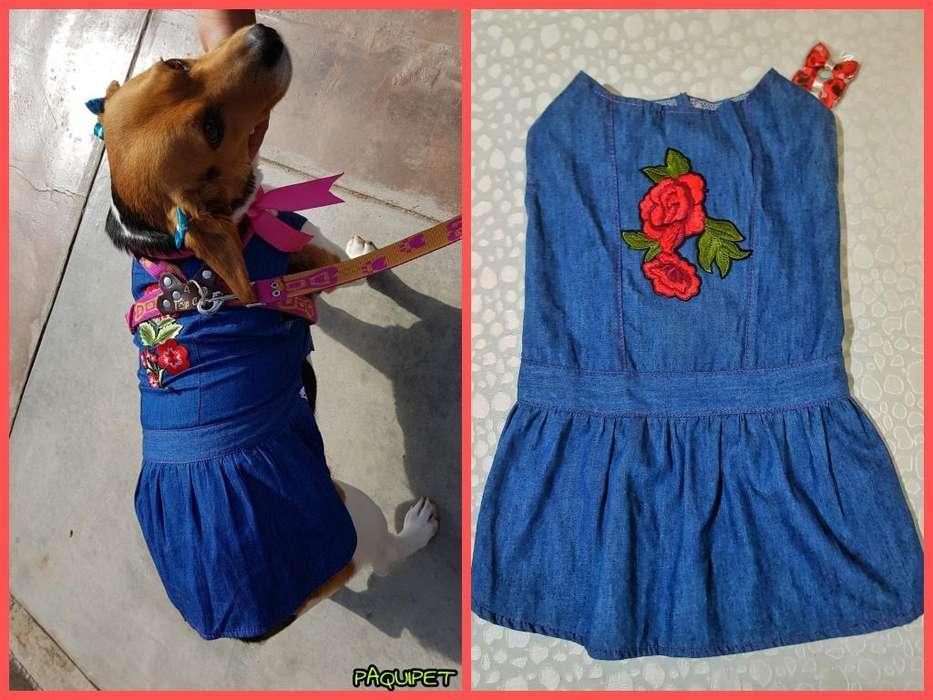 Vestido Jean para Perro O Gato