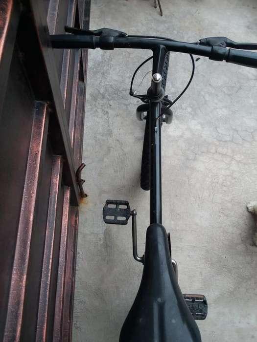 vendo bicicleta tipo montañera en 60 dolares
