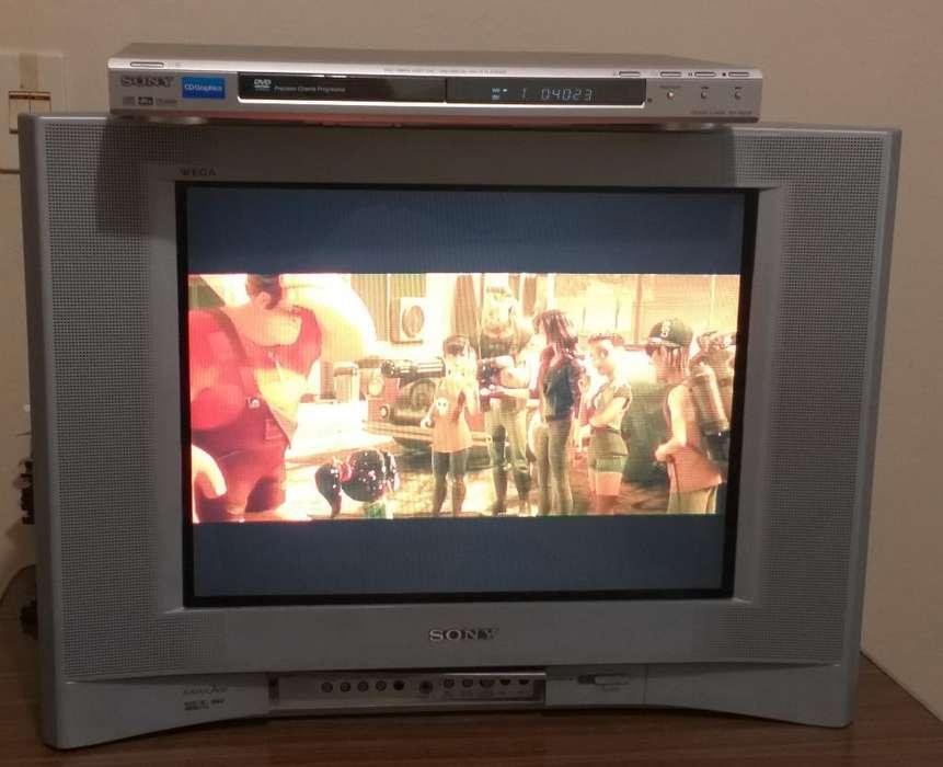 Vendo Tv Sony con Dvd
