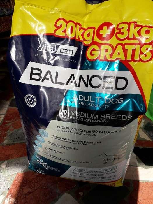 Alimento Premium 20 Kg