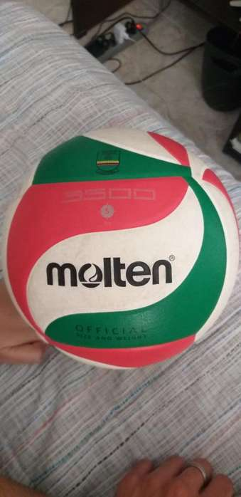 Balon de Volleyball Professional