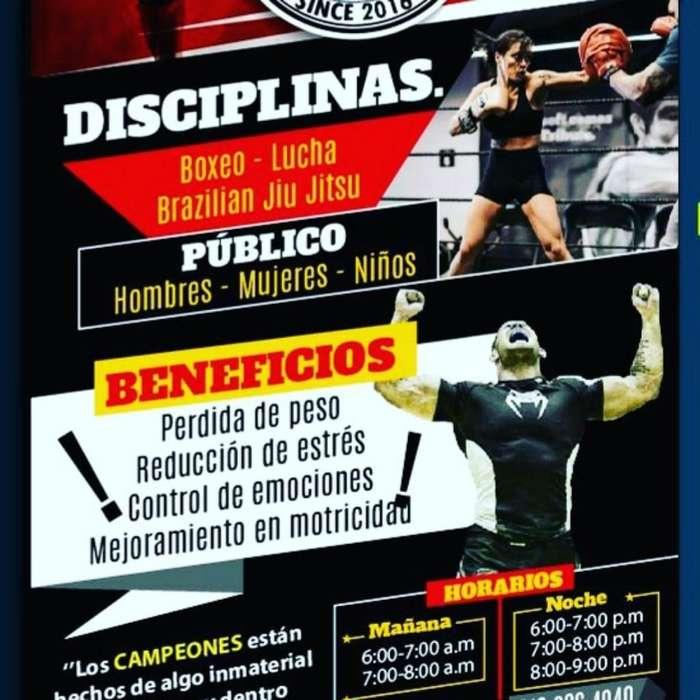 Aprende a Boxear, Luchar Y Bjj