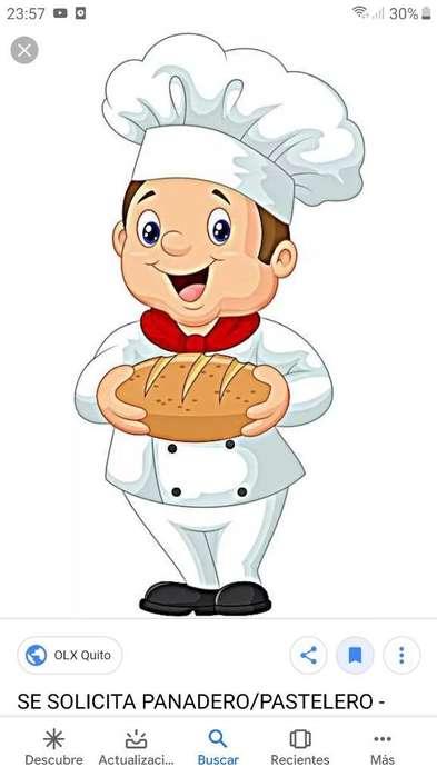 Se Necesita Panadero Pastelero
