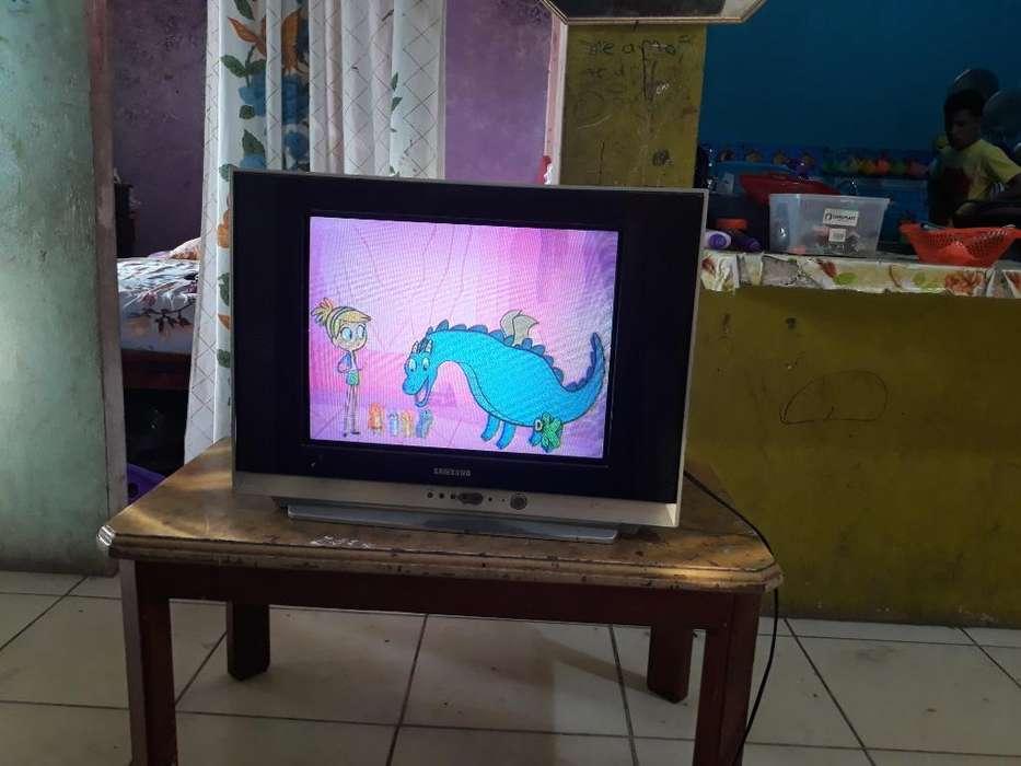 Televisor de 21 Pulgada Flamante