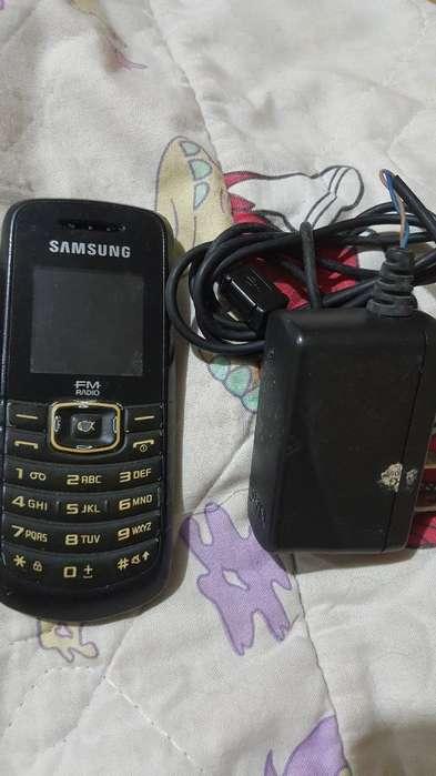 Celular Samsung Funcional