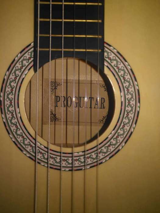 Vendo O Cambio Guitarra