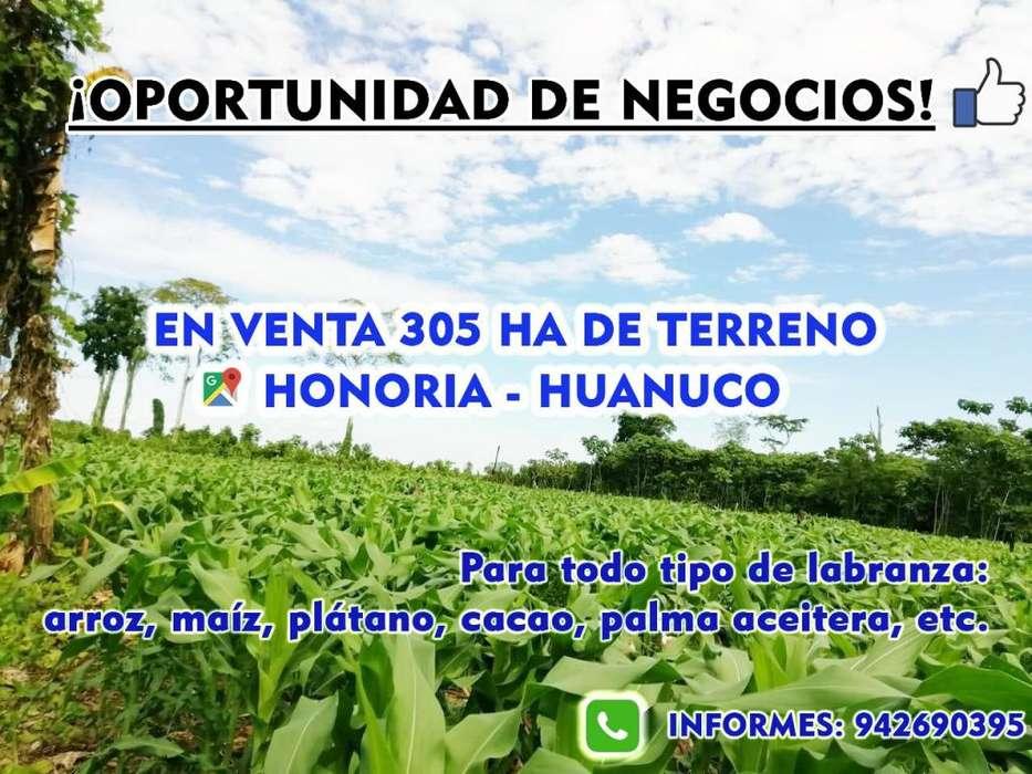 Terrenos Venta Huanuco