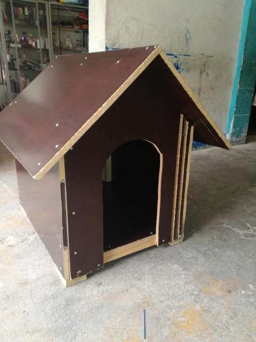 Casa Ideal para Tu Mascota
