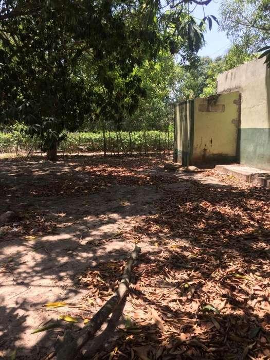 VENTA LOTE EN CARACOLÍ MALAMBO COD. 5303
