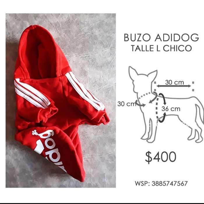 Buzo Perro