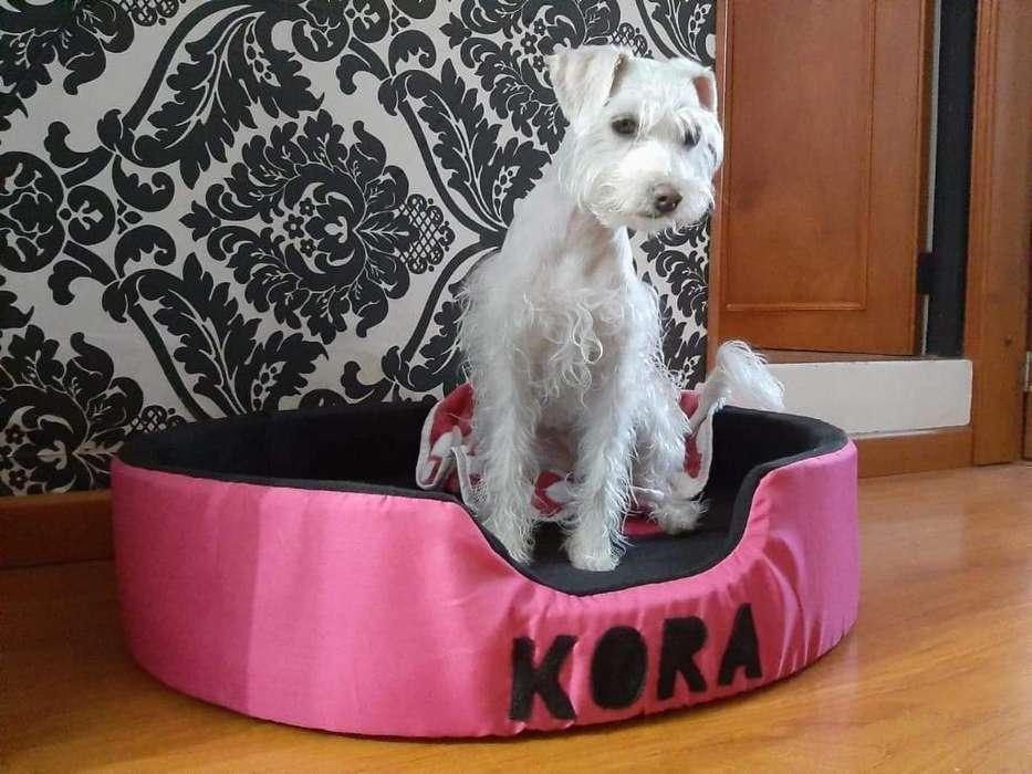 Camas Artesanales para Mascotas