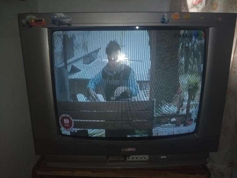 Vendo Televisor de 29 con Control