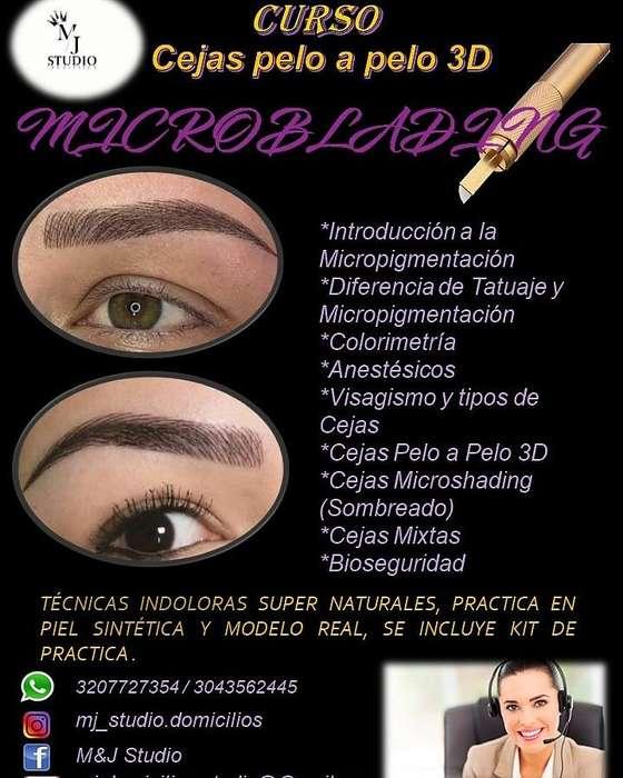 Curso de Micropigmentación de cejas