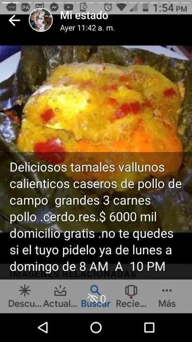 Tamales Vallunos
