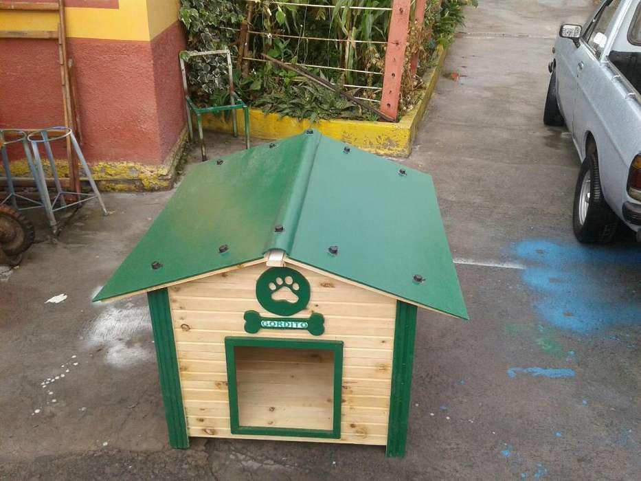 Casas para Perros Verde