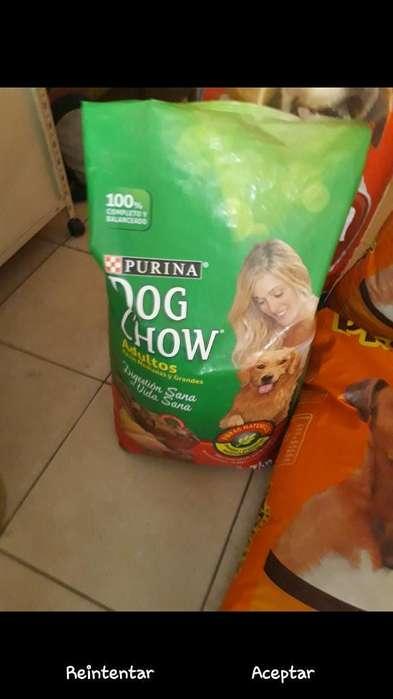 Purina Dog Chow Adulto