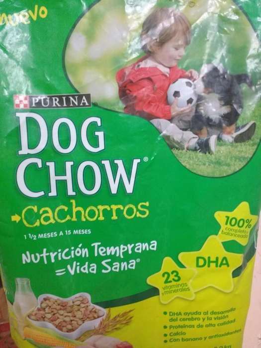 DOG CHOW 8 KILOS PREMIUN