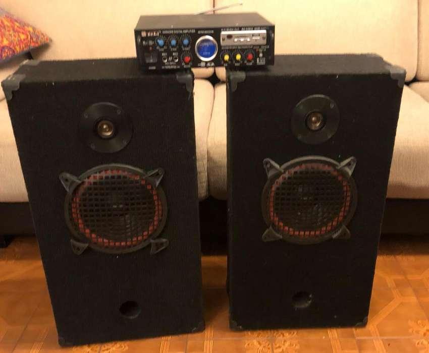 Bafles y Amplificador
