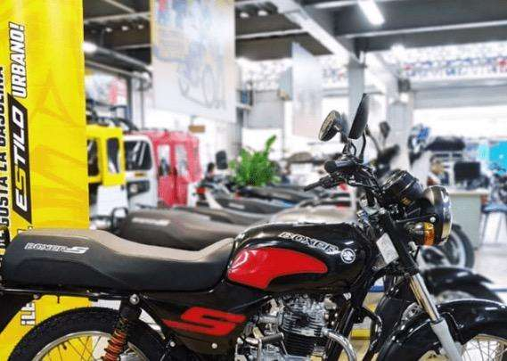 Arriendo Motocicletas Auteco Boxer 2020