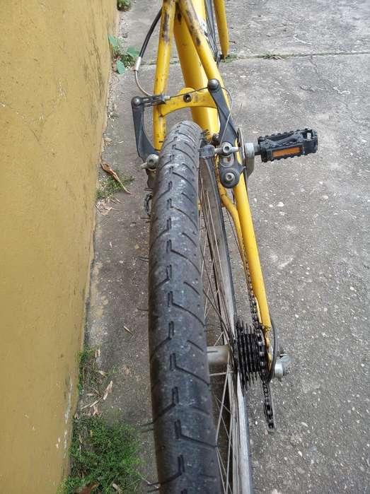 Bici Mtb Rod 26